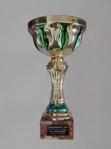 Torneo PascquaInsieme 2009